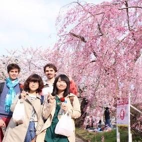 フランスから4名の留学生を受け入れました